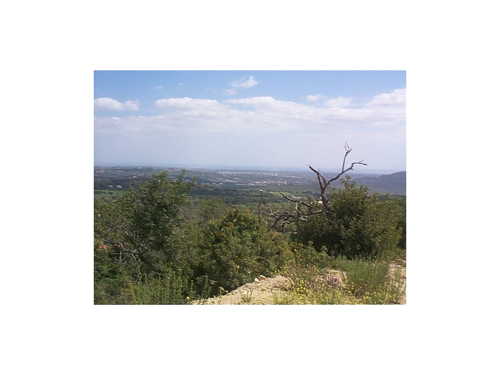 Land_for_sale_in_Loule_sma8926