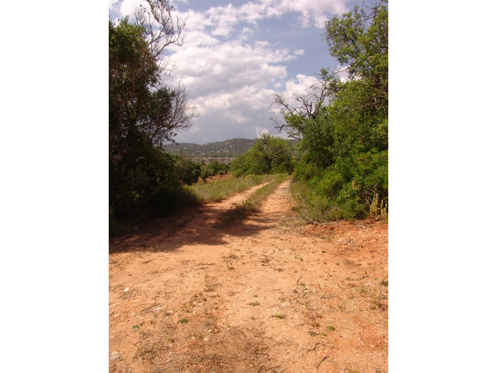 Rural Land_for_sale_in_Alcaria Cova (Estoi)_sma8934