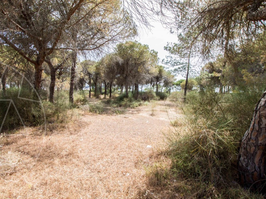 Land_for_sale_in_Loule_sma8964