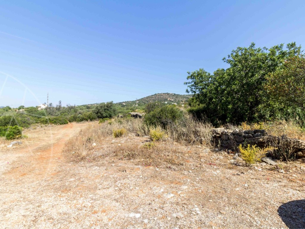 Rural Land_for_sale_in_Alcaria Cova (Estoi)_sma8966