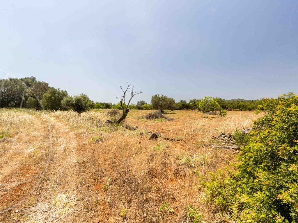Rural Land_for_sale_in_Loule_SMA8991