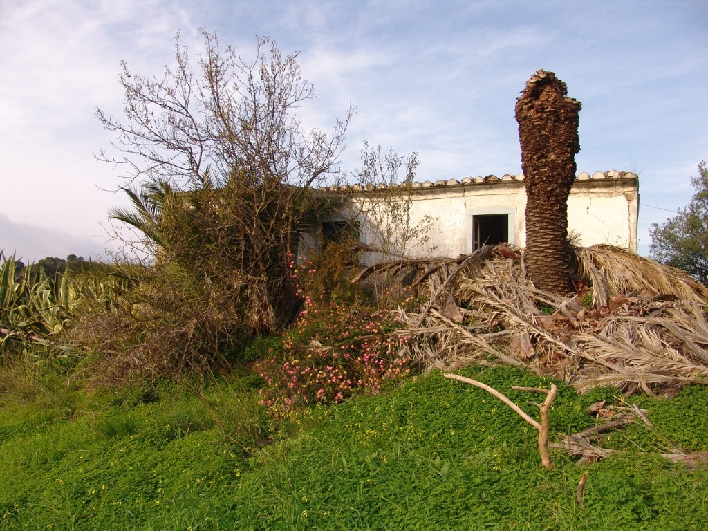 Mixed Land_for_sale_in_Tavira_SMA8998