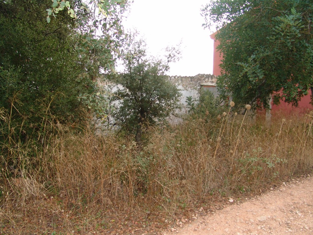 Plot for sale in Loule sma9014
