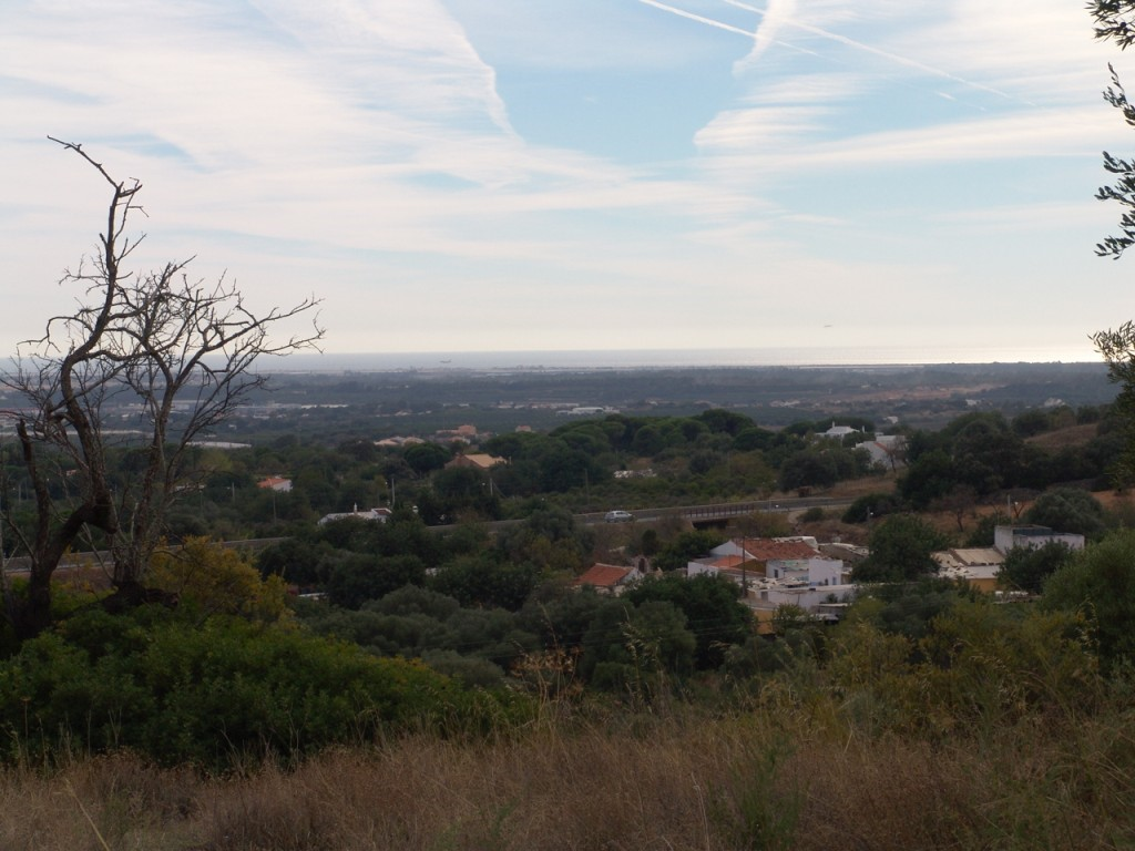 Urban Land_for_sale_in_Santa Bárbara de Nexe_sma9024