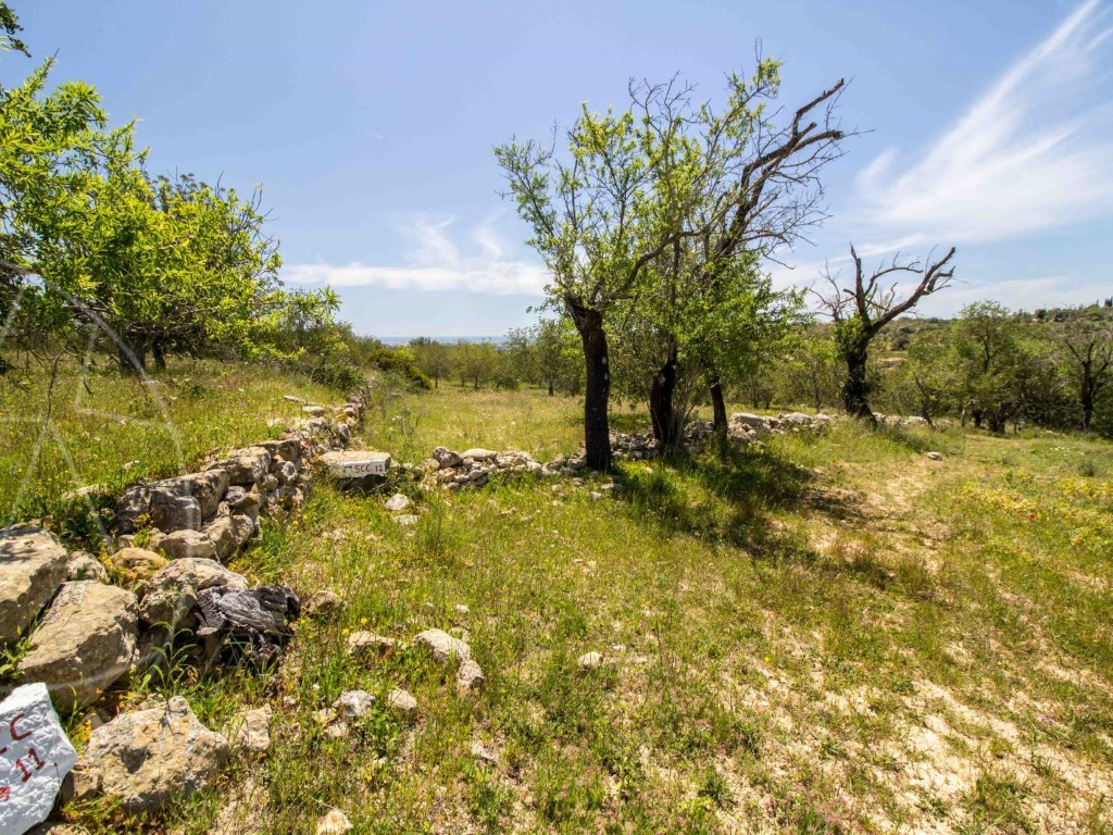 Rural Land_for_sale_in_Boliqueime_sma9073